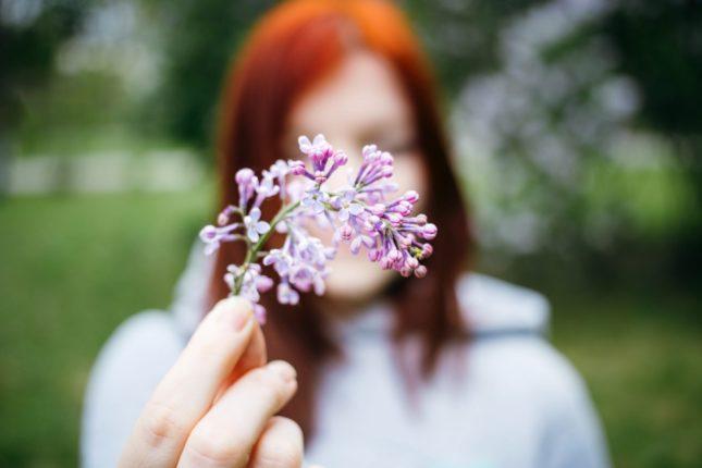 image printanière, avec fleur en relation avec la saison et les allèrgie