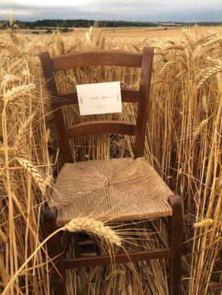 Chaise d'isabelle Adjani  dans les blé au défilé Jacquemus